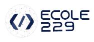 Ecole229 Logo